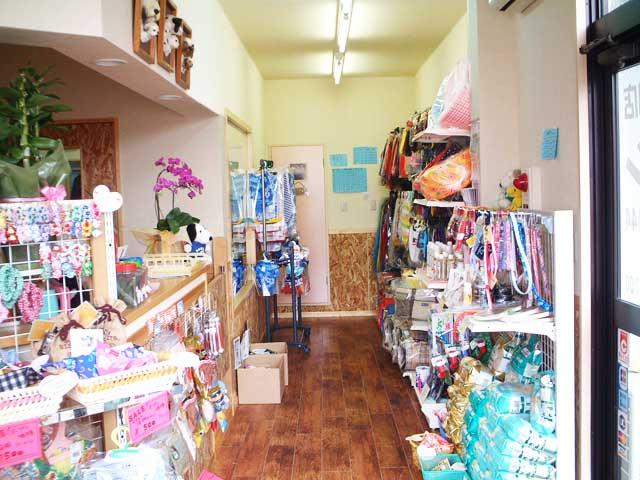 犬の専門店コロン|川越・鶴ヶ島のペットショップ、トリミング、ドッグマッサージ、ホテル